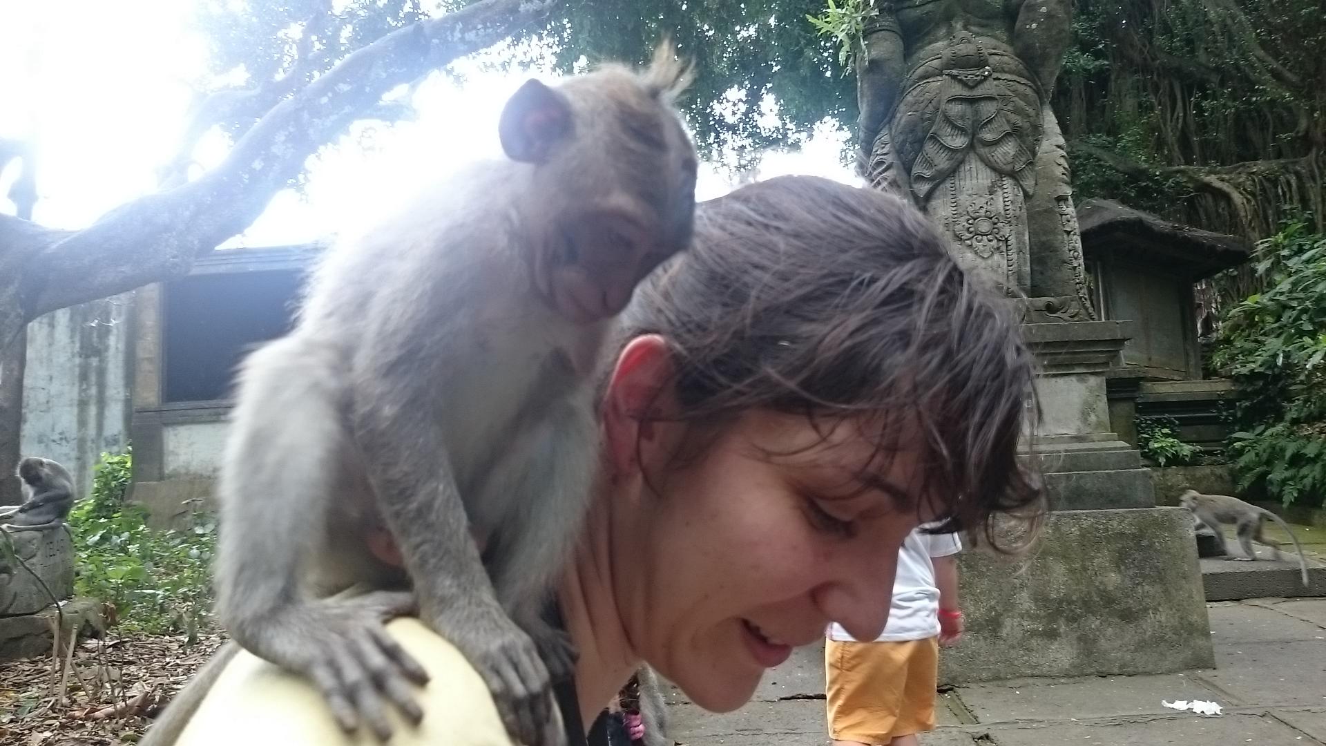 Decouvrir Bali : nos bons plans et nos boulettes ;) Partie 1 Ubud