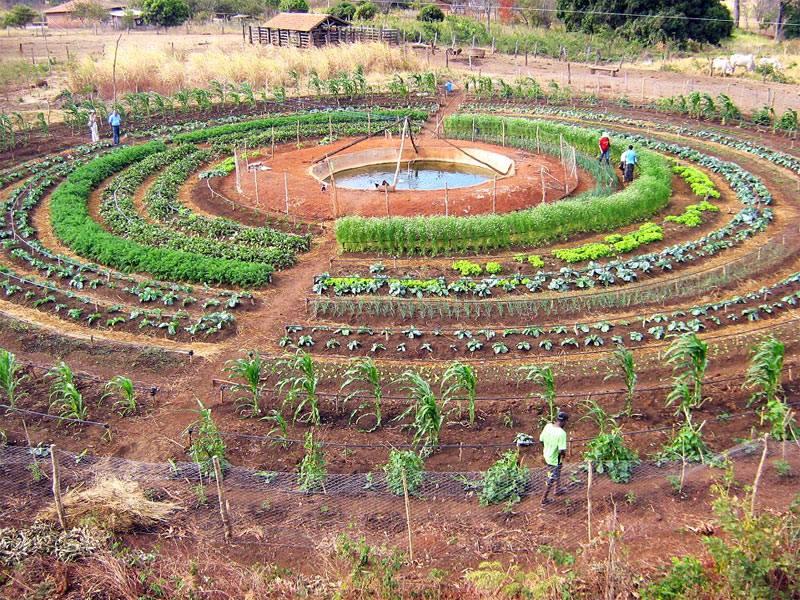 Permaculture et Spiritualité: à la croisée des chemins