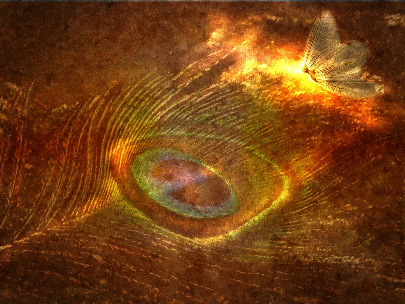 Je T'Emmène En Musique #6 : Transmutation